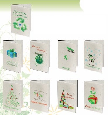 Seeded Paper Sample Designs of Christmas Holiday Cards