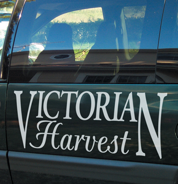 Custom car vinyl decals