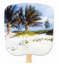 Palms Still Life Hand Fan