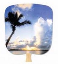 Tropical Sunset Hand Fan