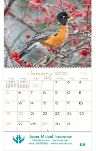 Backyard Birds 2020 Calendar