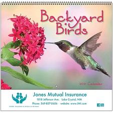 Backyard Birds 2021 Calendar Cover