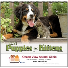 Puppies and Kittens 2021 Calendar Cover